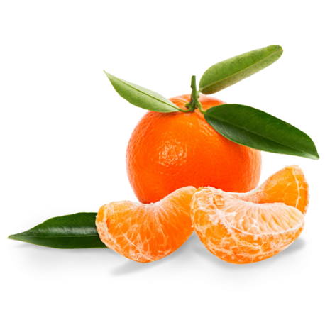 clementine-nour.png